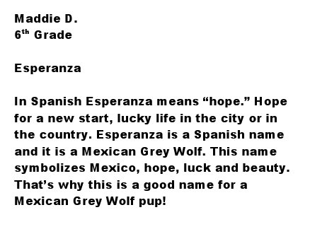 Mexicanwolves Press
