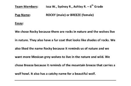 Rocky Or Breeze Submitted
