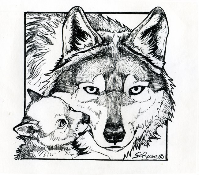 mexicanwolves.org - Press