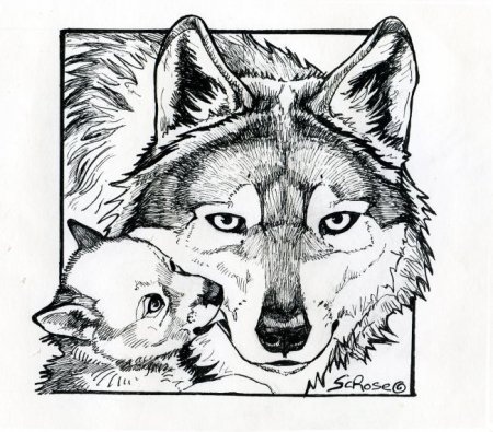 Wolf Coloring Pages on This Beautiful Mom And Pup Drawing As A Coloring Page  Click H Ere
